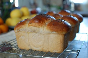 Sweet Red Bean Milk Bread
