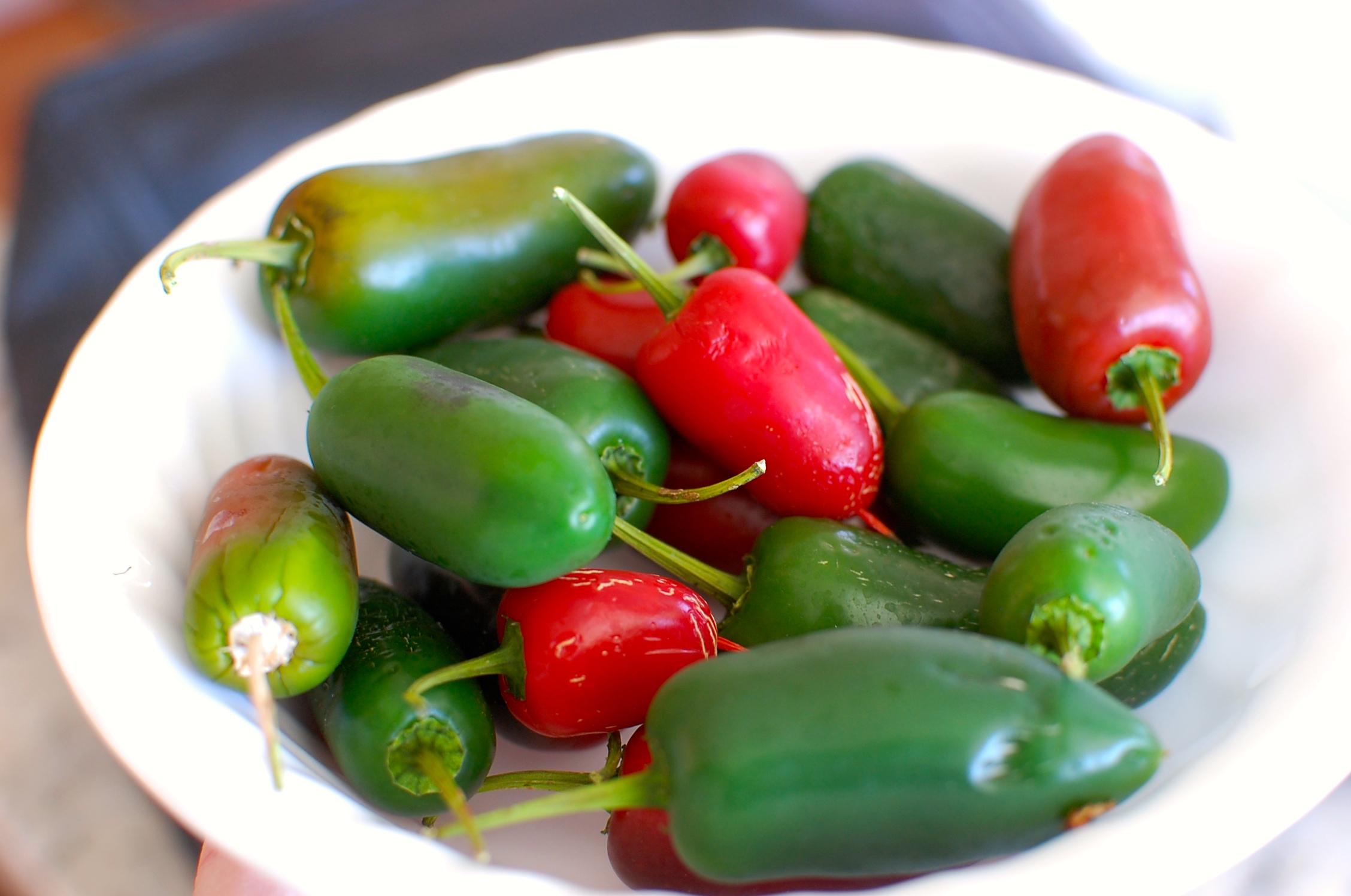 how to make roasted garlic salsa
